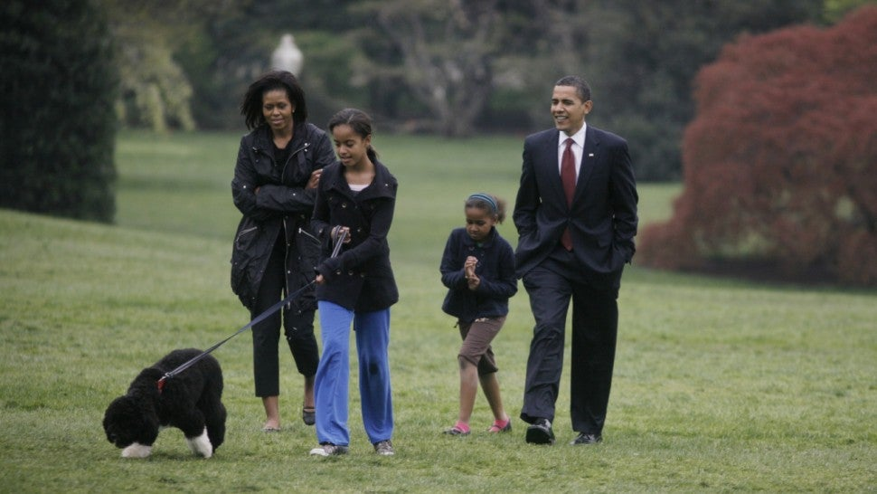 The Obamas' beloved dog, Bo, died unexpectedly.